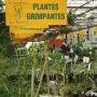 Portes ouvertes au CFP des Moissons et expo-vente Moissons en fleurs les 3 et 4 mai
