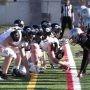 Football collégial – Match de demi-finale : le Noir et Or reçoit les Lynx