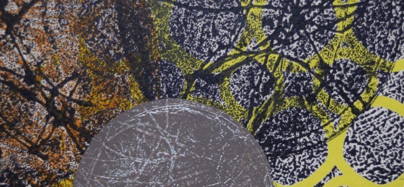 Carmen Dubuc, artiste du papier et de l'estampe, à la Galerie de la MRC