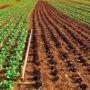 Invitation à une cohabitation harmonieuse en zone agricole