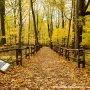 Deux milieux naturels pour de belles randonnées d'automne