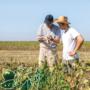 Lumière sur l'emploi de pesticides en zone agricole