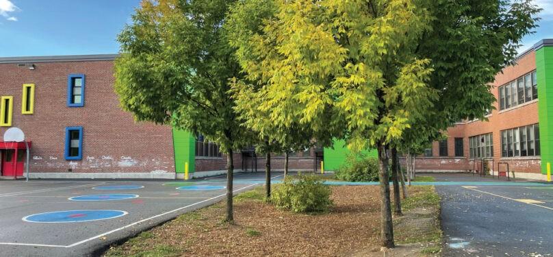 Investissements dans les parcs de Valleyfield cet automne