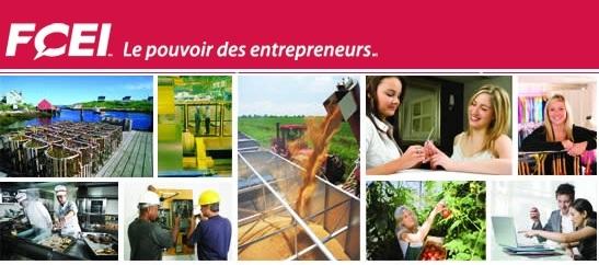 Fédération canadienne de l entreprise indépendante