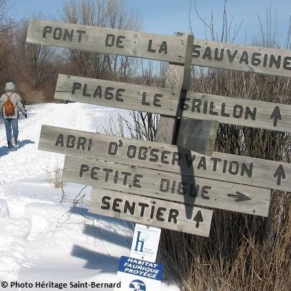 Refuge-faunique-Marguerite-D-Youville-Sentier-Photo-courtoisie-Heritage-Saint-Bernard-publiee-par-INFOSuroit-com_