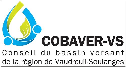 COBAVER-VS_logo