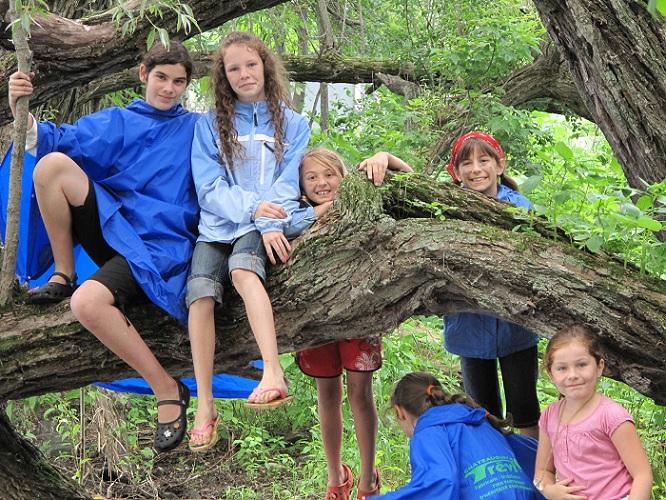 Camp-de-jour-Jeunes-sur-branche-arbre-Photo-Heritage-Saint-Bernard-publiee-par-INFOSuroit-com_