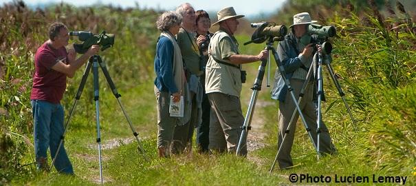 Observateurs-oiseaux-Club-des-ornithologues-de-Chateauguay-Photo-Lucien-Lemay-publiee-par-INFOSuroit