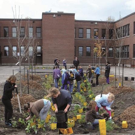 Parc-ecole-quartier-Champlain-enfants-ecole-Sacre-Coeur-plantent-arbustes-Photo-publiee-par-INFOSuroit