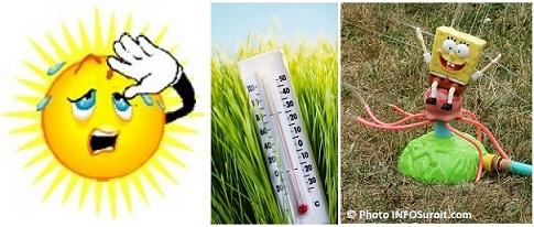Canicule-soleil-thermometre-chaleur-Images-CPA-et-arrosoir-arrosage-eau-Images-Photo-INFOSuroit.com-