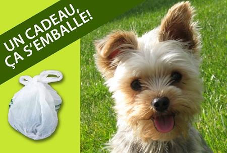 Affiche-un-cadeau-cela-s-emballe-Photo-chien-extrait-depliant-Ville-de-Chateauguay-publiee-par-INFOSuroit-com_