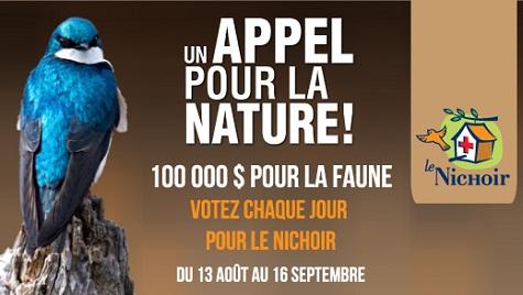 Le-Nichoir-Hudson-concours-Un-Appel-de-la-nature-Photo-courtoisie-publiee-par-INFOSuroit-com
