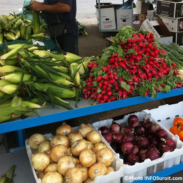 Marche-public-Valleyfield-Legumes-Ble-d-Inde-radis-oignons-Photo-INFOSuroit-com_