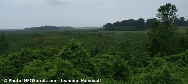 Reserve-nationale-de-faune-du-lac-Saint-Francois-Photo-INFOSuroit-com_Jeannine-Haineault