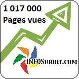 INFOSuroit.com_Fleche Million-Pages_vues