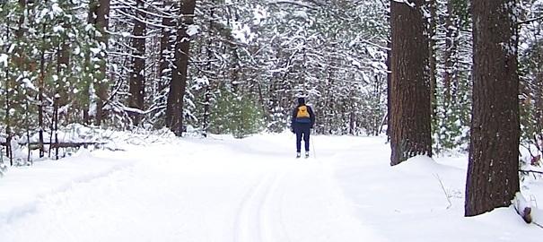 Base-de-Plein-air-des-Cedres-Skieur-de-fond-dans-les-bois-Neige-blanche-Photo-courtoisie-Tourisme-Suroit