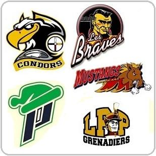 Hockey-Condors-Braves-Mustangs-Patriotes-et-Grenadiers-logos-publies-par-INFOSuroit