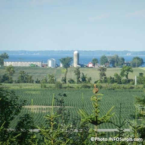Vaudreuil-Soulanges-vue-terres-agricoles-et-lac-depuis-Cote-de-Vaudreuil-Photo-INFOSuroit
