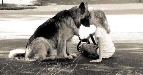 Atelier-conference-chien-enfant-Une-Affaire-de-Famille-photo-courtoisie-publiee-par-INFOSuroit