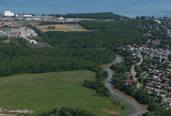 Beauharnois- Zone plantation-arbres-Bois-Robert-au-nord-autoroute-30-pres-riviere-Photo-courtoisie