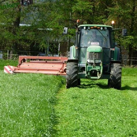 Reglement-13-herbe-et-broussaille-Valleyfield-entretien-terrain-photo-courtoisie-publiee-par-INFOSuroit