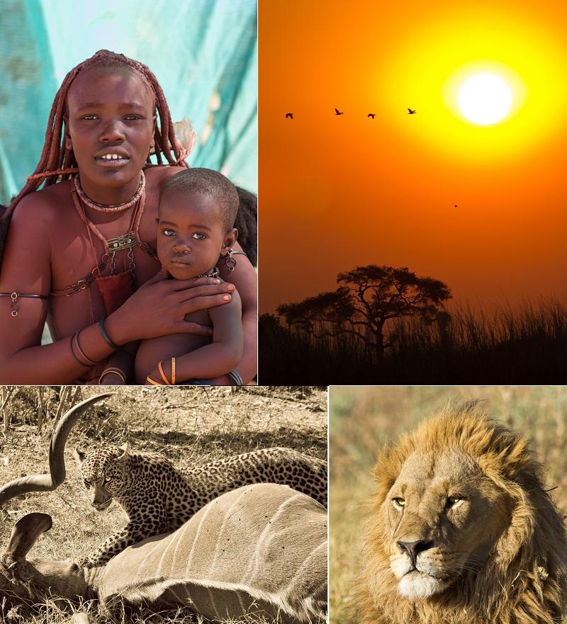 Exposition-Safari-Afrique-Nature-forte-et-fragile-Stephane_Neron-Pavillon-ile-photos-courtoisie-publiees-par-INFOSuroit.jpg