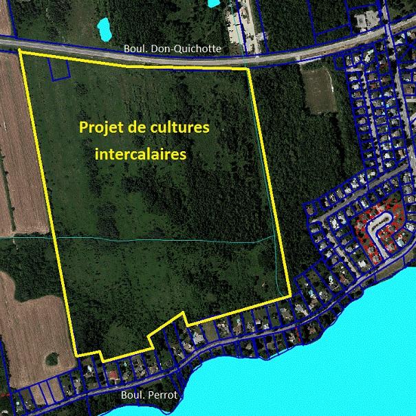 Projet-culture-intercalaire-agroforesterie-site-Notre-Dame-de-l-Ile-Perrot-Photo-NDIP