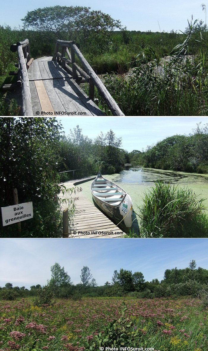 Reserve-nationale-de-faune-lac_St-Francois-rabaska-et plus-Photos-INFOSuroit_com