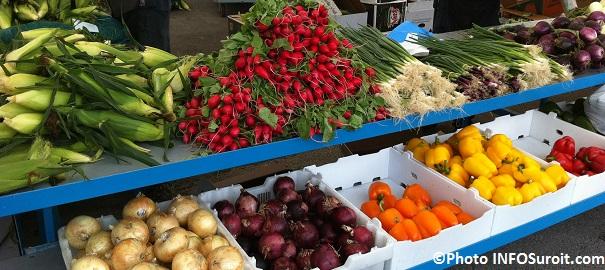 ble-d-Inde-fruits-oignons-echalottes-radis-piments-legumes-marche-public-Photo-INFOSuroit_com