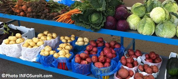 legumes-patates-carottes-chou-navets-marche-public-Photo-INFOSuroit_com