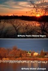 Concours-photo-Sainte-Martine-2013-2-ieme-et-3-ieme-places-Photos-Pedro_Molina_Negro-et-Michel_Levesque