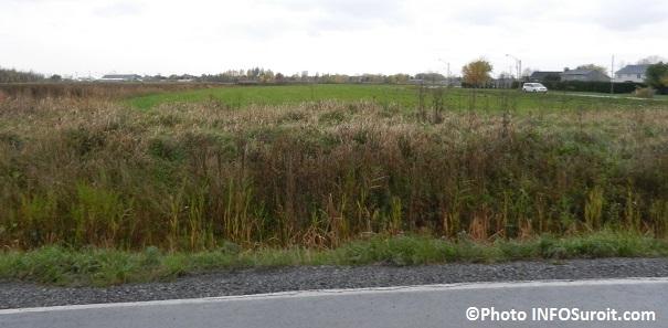terrain-commercial-convoite-pres-autoroute-30-et-boulevard-Cadieux-Photo-INFOSuroit_com
