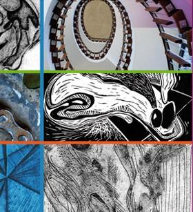 Exposition-intercollegiale-arts-visuels-College-Valleyfield-encan-silencieux-photo-courtoisie-publiee-par-INFOSuroit_com
