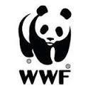 Organisme-environnemental-WWF-logo officiel