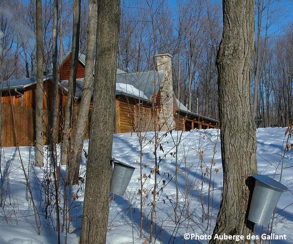 Sucrerie-des-Gallant-erables-Cabane-en-bois-rond-hiver-Photo-Auberge-des-Gallant
