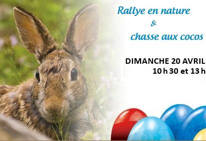 Heritage-St-Bernard-lievre-Rallye-nature-et-chasse-aux-cocos-Ile-St-Bernard-Image-courtoisie