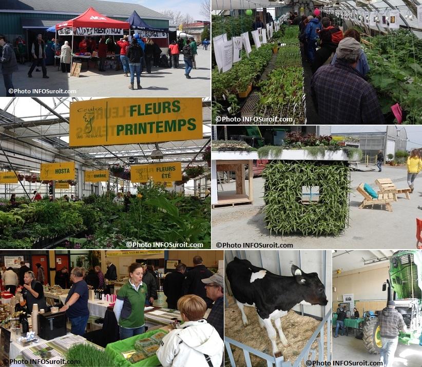 Moissons-en-Fleurs-2014-Maison-des-jeunes-Horticulture-Pacte-Vert-Saveur-Veau-Mecanique-Photos-INFOSuroit_com