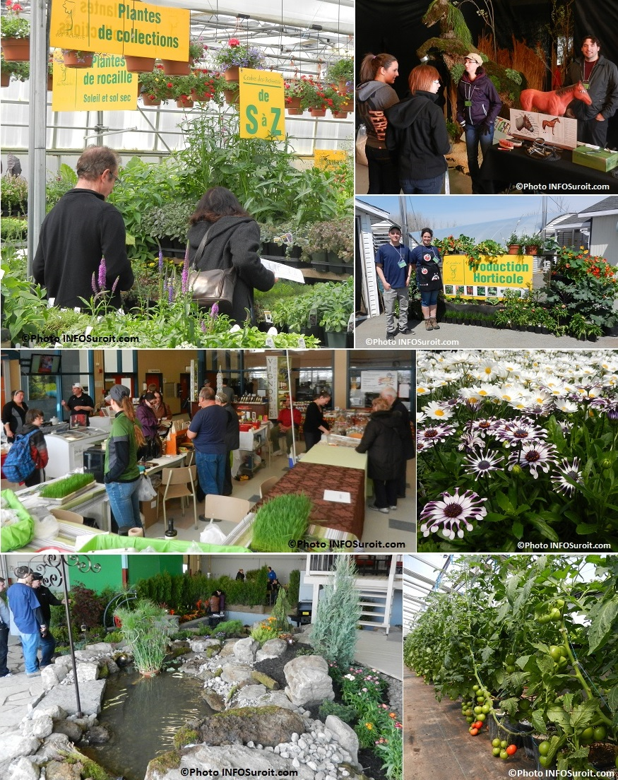 Moissons-en-Fleurs-2014-fleurs-vivaces-plants-de-legumes-programmes-de-formation-Photos-INFOSuroit_com