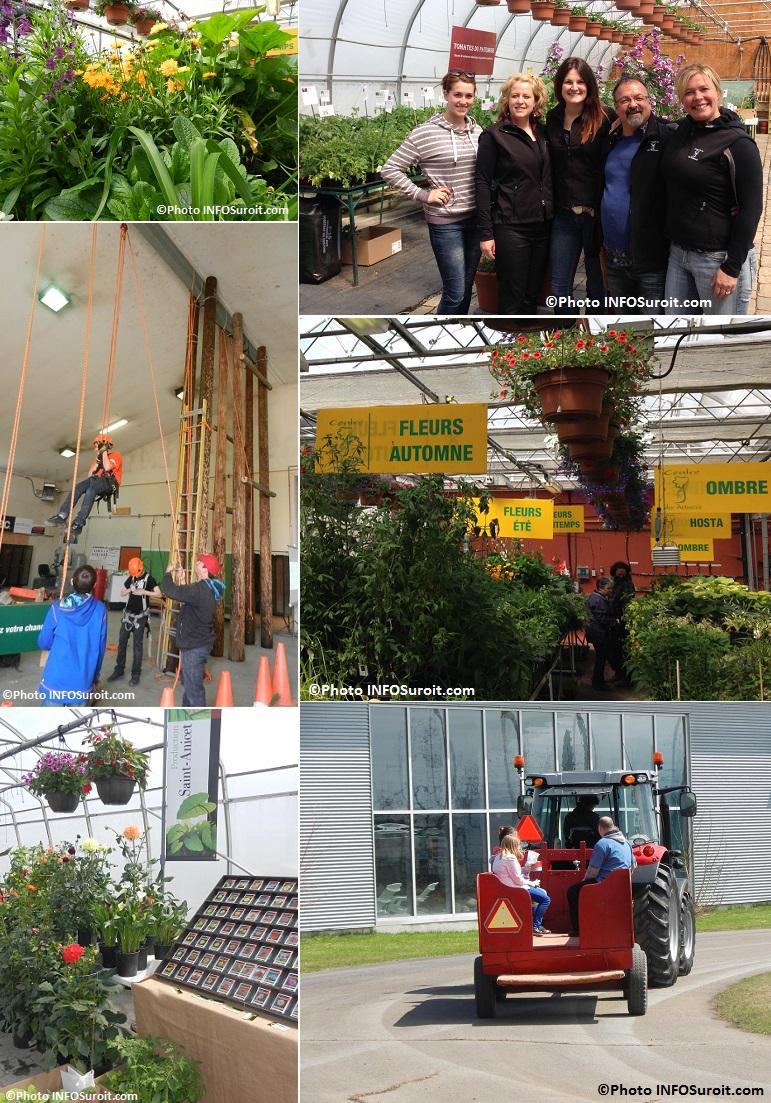 Moissons-en-Fleurs-2014-plantes-fleurs-Groupe-Tournesol-Elagage-tracteur-Photos-INFOSuroit_com
