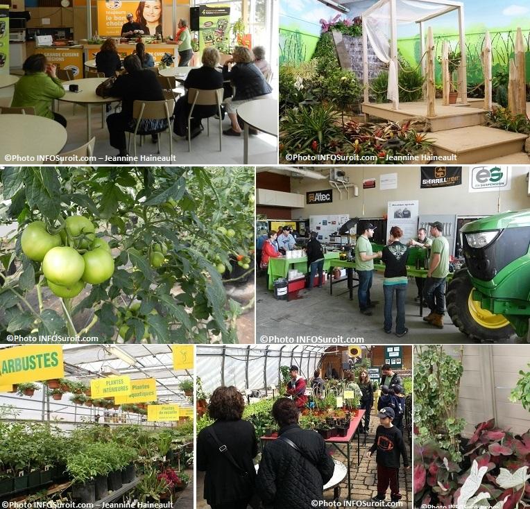 Moissons-en-Fleurs-plantes-arbustes-tomates-tracteur-Photos-INFOSuroit-Jeannine_Haineault