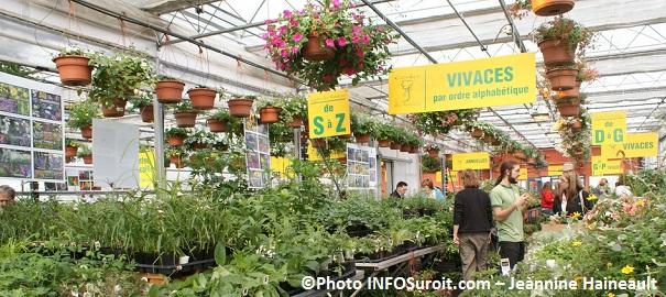 Moissons-en-fleurs-2013-section-plantes-vivaces-avec-visiteurs-Photo-INFOSuroit_com-Jeannine_Haineault
