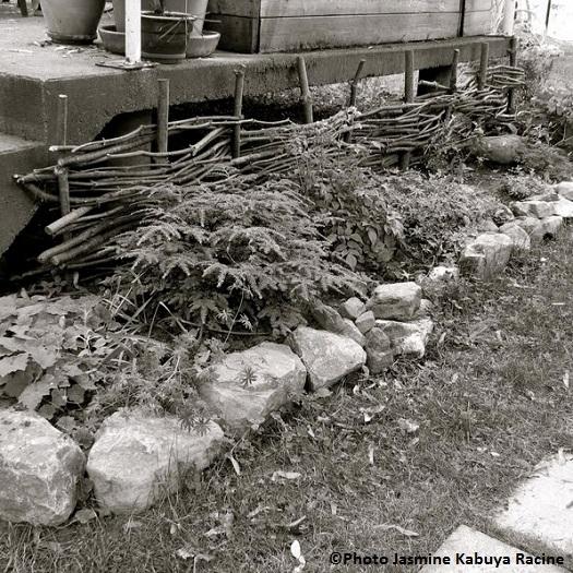 ecran-rustique-avec-vieilles-branches-coupees-Photo-Jasmine_Kabuya_Racine