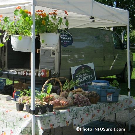 Marche-fermier-comte-Huntingdon-saison-estivale-kiosque-Jardins-Glenorra-Photo-INFOSuroit_com