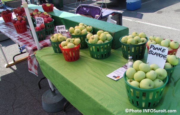 Marche-public-de-Valleyfield-aout-2014-pommes-de-monsieur-Ward-Photo-INFOSuroit_com