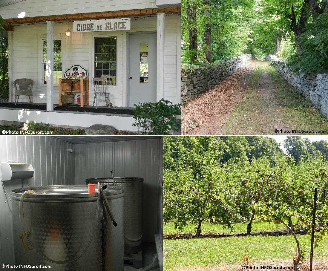 Pommes pommiers Cidrerie Pommeraie du Suroit cuves Photos INFOSuroit_com