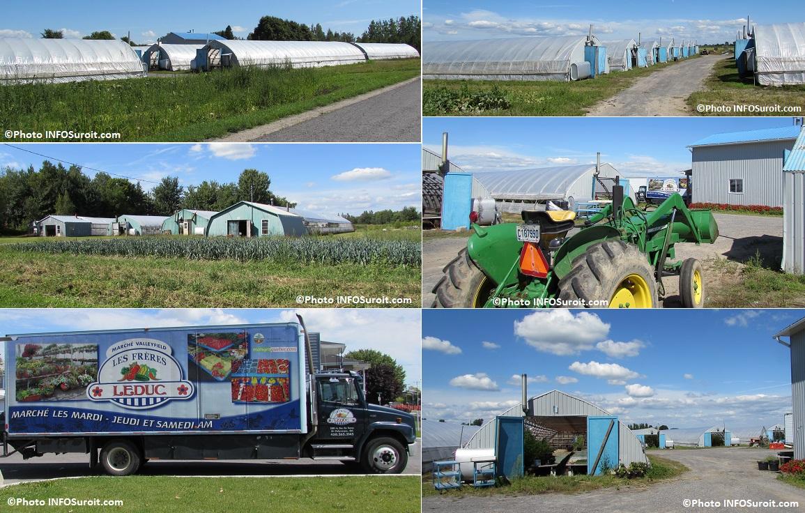 serres-des-Freres-Leduc-a-Saint-Polycarpe-avec-camion-Photos-INFOSuroit_com
