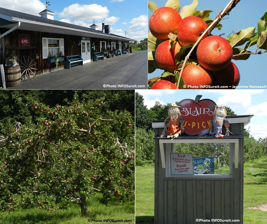 vergers Blair pommes pommiers cueillette batiment principal Photos INFOSuroit_com