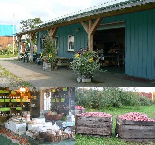 VergersFranklin Boutique pommiers boites de pommes et produits Photos site Web VergersFranklin_com