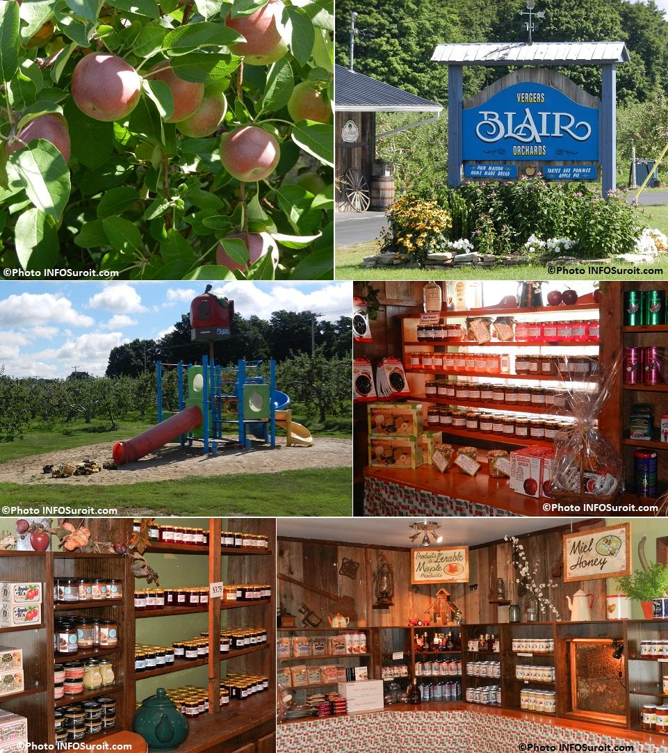 pommes Vergers Blair module jeux d enfants et boutique a Franklin Photos INFOSuroit_com