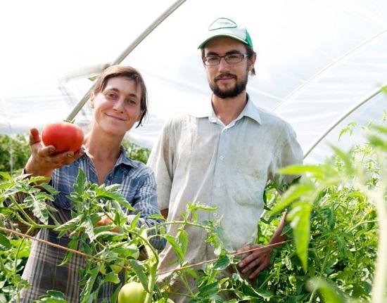 Cooperative-Jardins-de-la-resistance-Mylaine-et-Olivier-photo-courtoisie-publiee-par-INFOSuroit_com